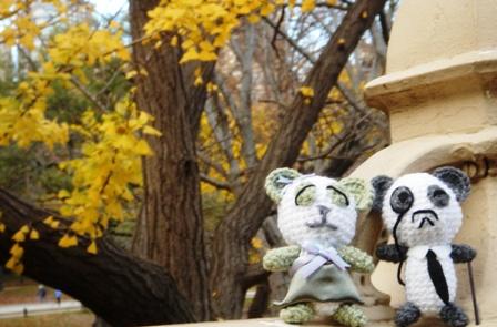 Mr_and_mrs_panda_take_a_stroll