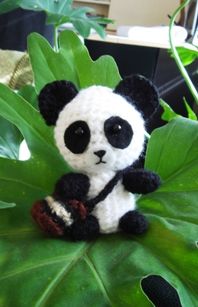Glenny_the_giant_panda_1