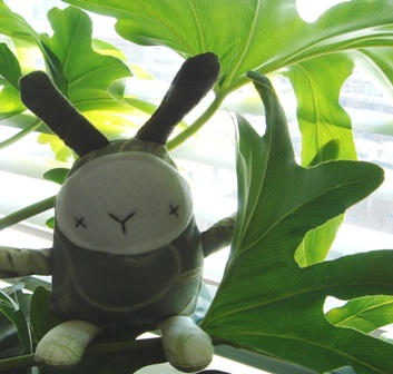 Mini_moopy_sitting_on_a_plant_1